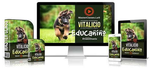 Curso adiestramiento canino Educanino
