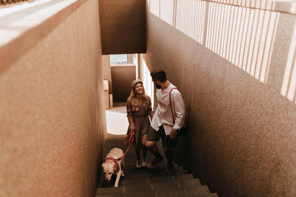 ¿Por qué mi perro no puede subir las escaleras?