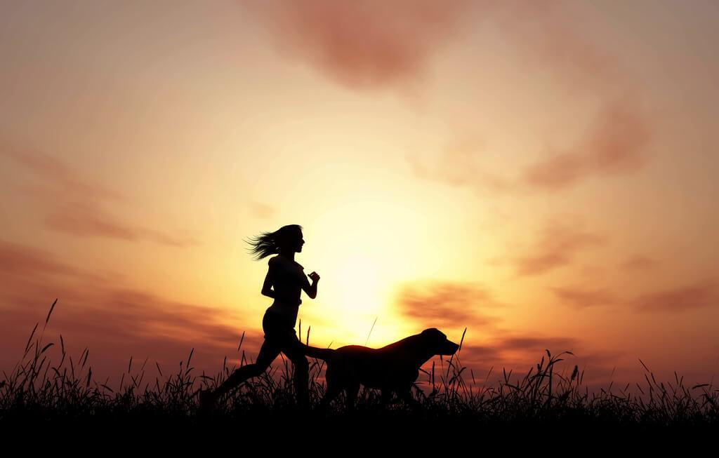 Perros para deportistas