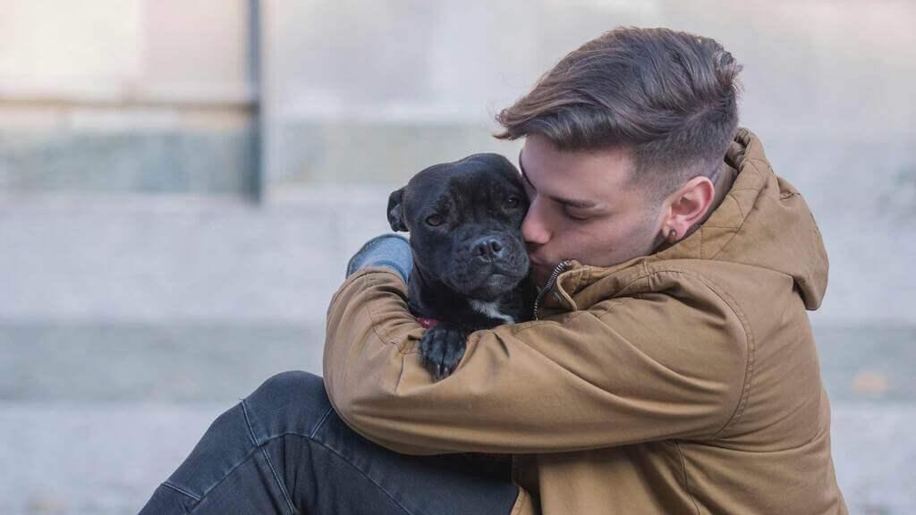 Por qué mi perro me gruñe cuando lo abrazo