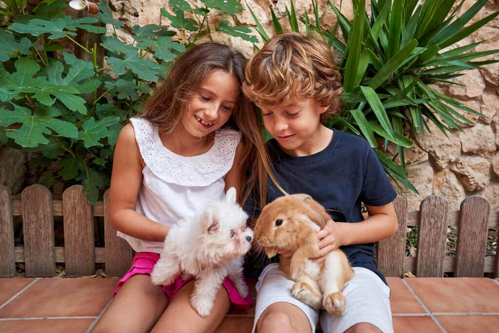 Enseña a tu perro a convivir con un conejo